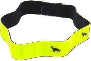 Hi Vis Animal Collars